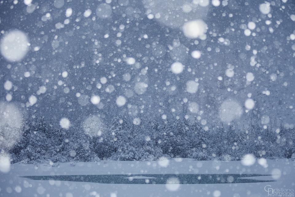 Magia dell'inverno